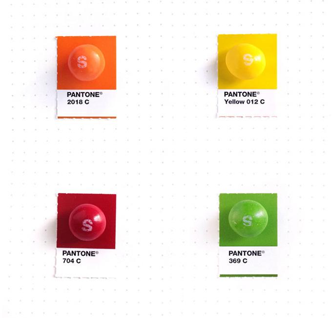 pantone projeto 4