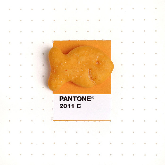 pantone projeto 6