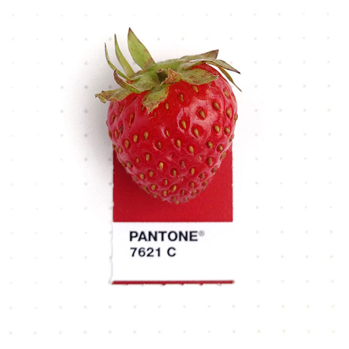 pantone projeto 5