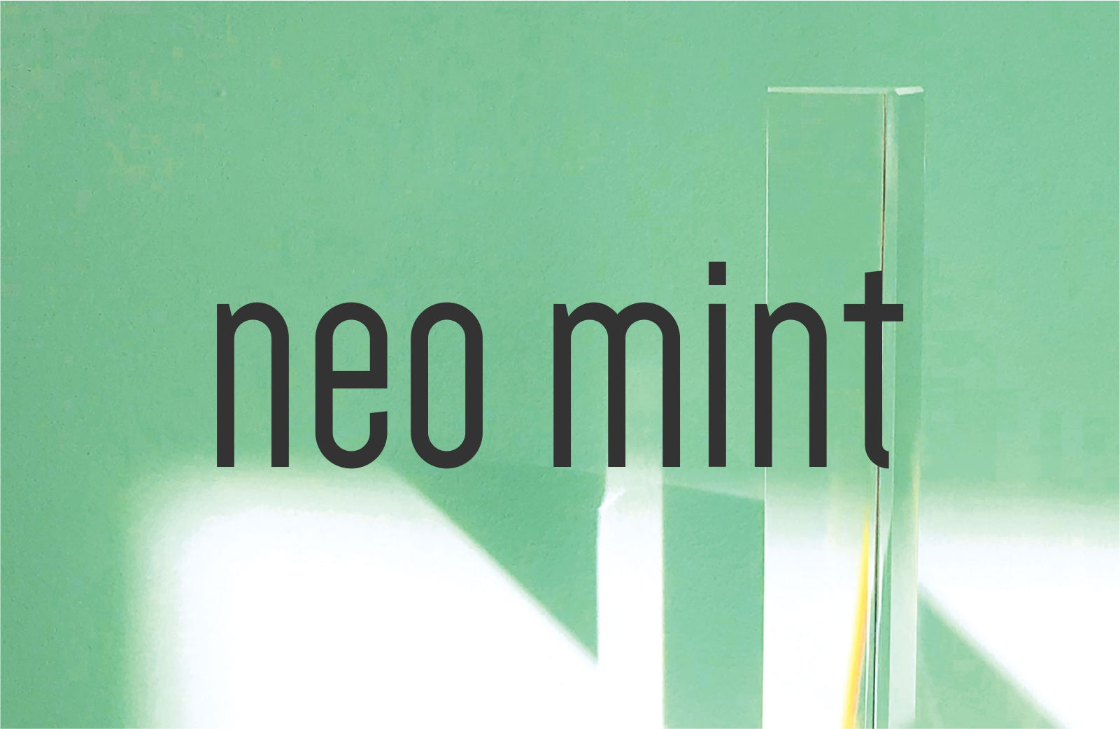 neo mint, cor do ano 2020 segundo a wsgn