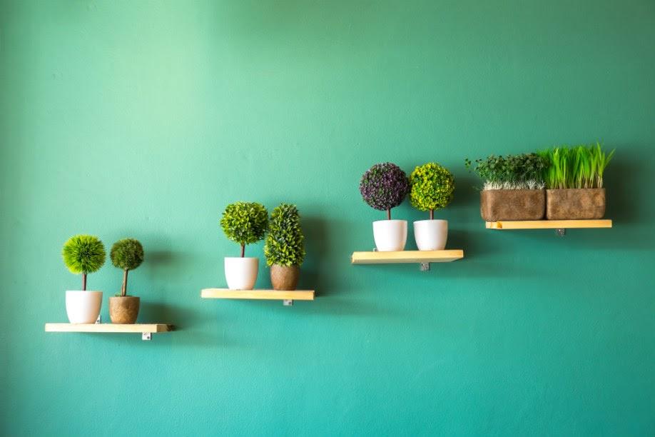 dicas de decoração com plantas